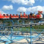 Dragon Roller Coaster Rides for Sale In South Africa