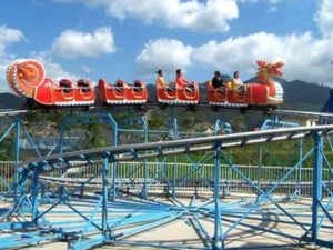 Dragon Roller Coaster Rides In South Africa