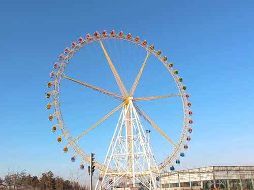 Large Ferris Wheel Rides for Sale